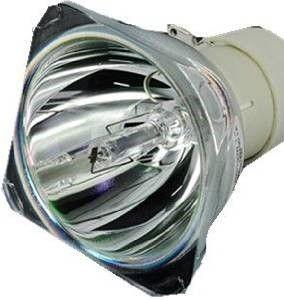 BenQ LAMP MODULE PRJ W700 W700+ W703D W1060