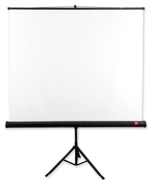 AVTek Ekran na statywie Tripod Standard 200, 200x200 cm, 1:1
