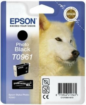 Epson wkład atramentowy photo black do Stylus Photo R2880