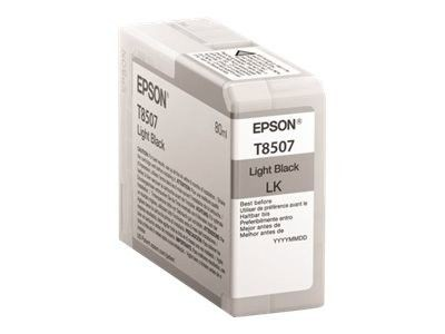 Epson Singlepack Photo Light Black cartridge, T850700
