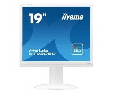 iiyama Monitor 19 B1980SD-W1 TN,VGA,DVI-D,TN,GŁOŚNIKI